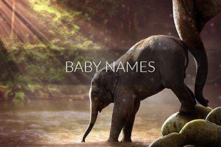 baby-names-compressor