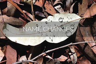 name-changes-compressor